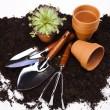 Garden tools concept — Stock Photo