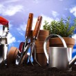 Stock Photo: Flowers and garden tools on blue sky background
