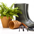 Garden boots with tool, plant — Stock Photo #11282117