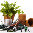 Assorted gardening — Stock Photo