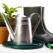 Garden boots with tool, plant — Stock Photo #11282804