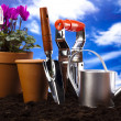 Gardening time, garden — Stock Photo