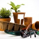 Gardening time, garden — Stock Photo #11283130