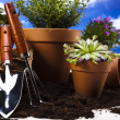 Flowers and garden tools on blue sky background — Stock Photo #11284690