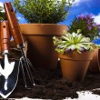 Flowers and garden tools on blue sky background — Stock Photo