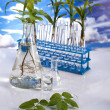 Laboratory  on blue sky background — Foto Stock