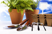 Flowers and garden tool — Stock Photo