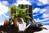 Watering Can And Garden — Stock Photo
