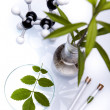 Chemical laboratory glassware equipment, ecology - Stockfoto