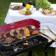 Barbecue a hot summer evening, Grilling — 图库照片