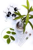 Equipamento de vidraria de laboratório químico, ecologia — Fotografia Stock