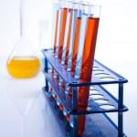 Chemistry equipment, laboratory glassware — Stock Photo #11378983