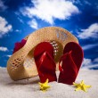 Flip-flops on a sandy beach  — Foto de Stock