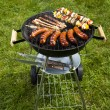 Stock fotografie: Grilling at summer weekend
