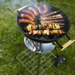 Stock fotografie: Grilling time