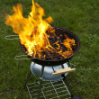 Stock Photo: Fire, Hot grilling