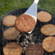 Stock fotografie: Steak, Grilling at summer weekend