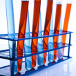 Chemical laboratory, glassware equipment — Stock Photo