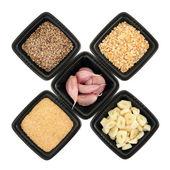 Garlic Ingredients — Stock Photo