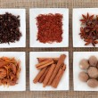 Spice Sampler — Foto Stock #11165534