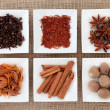 Spice Sampler — Stockfoto #11165534