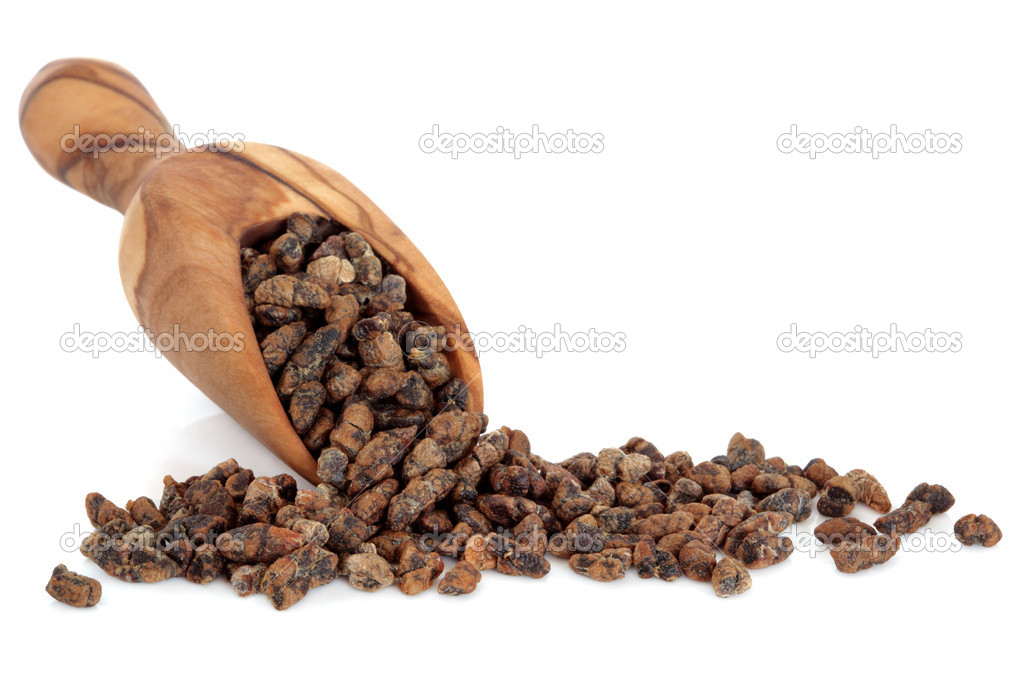 Cardamom seed in an olive wood scoop over white background. — Stock Photo #11310096