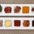 Spice Sampler — Stockfoto #11544767