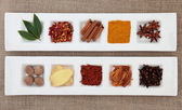 Spice Sampler — Stockfoto