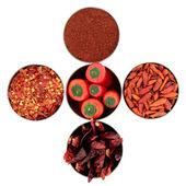 Chili kruiden verscheidenheid — Stockfoto