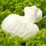 Burrata on salad — Stock Photo