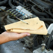 Stock Photo: Auto mechanic checking oil
