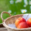 Basket with apples — Stock Photo