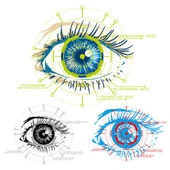 Vector image of eyes security — Stock Photo