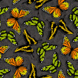 Butterfly wallpaper — 图库照片