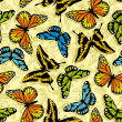 Butterfly wallpaper — Stock Photo