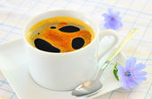Chicory hot drink — Stock Photo