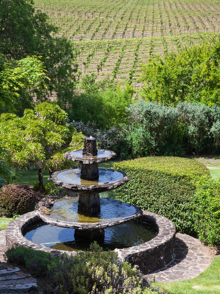 Beautiful landscape with water fountain and vineyards in Napa Valley, California. — Stock Photo #11016618