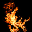 Fire flames — Stock Photo #12160284
