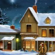 Christmas village — Stock Photo #11835885