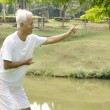 Asian senior performing taichi — Stock Photo