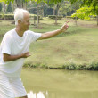 Stock Photo: asian senior performing taichi
