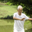 Stock Photo: Asisenior performing taichi