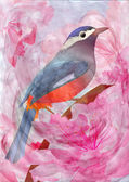 Pink flowers and bird watercolor illustration — Stock Photo