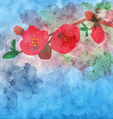 Watercolor garnet flower with colorful background — Stok fotoğraf