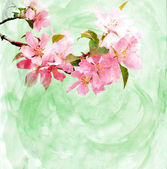 Spring trees blossom watercolor illustration — Stock Photo