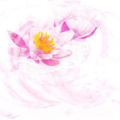 Pink water lily watercolor illustration isolated on white — Stock Photo
