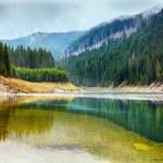 Lake Galbenu in Romania — Stock Photo #10802291