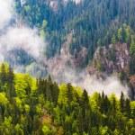 Parang mountains in Romania — Stock Photo