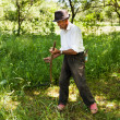 Stock Photo: Senior farmer mowing with vintage scythe