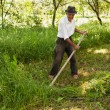 Senior farmer mowing with vintage scythe - Stock Photo